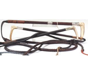 Link to a selection of hunting whips for sale